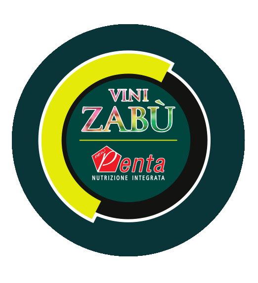 Vini Zabu - Pro Cycling Team