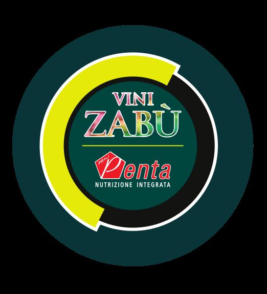 Vini Zabu - Pro Cycling Team